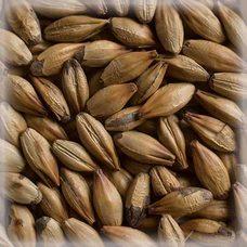 Солод Château Roasted Barley (0,25 кг)